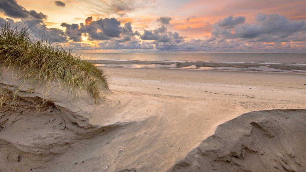 Dune View on North Sea